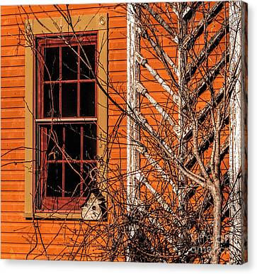 White Bird House Canvas Print by Trey Foerster