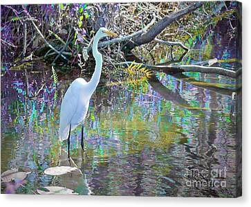 White Bird In Paradise Canvas Print by Judy Kay