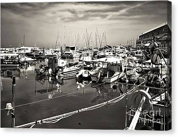 White Boats In The Port Canvas Print by John Rizzuto