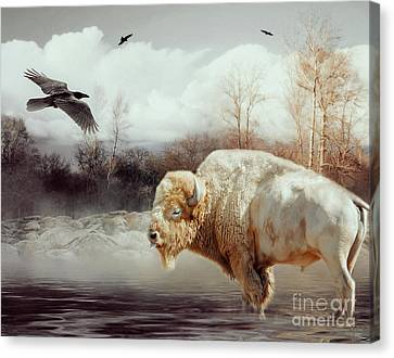 White Buffalo And Raven Canvas Print by KaFra Art