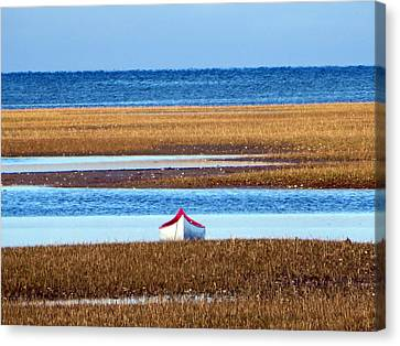 White Canoe In Tidal Marsh Canvas Print by Tom Baratz