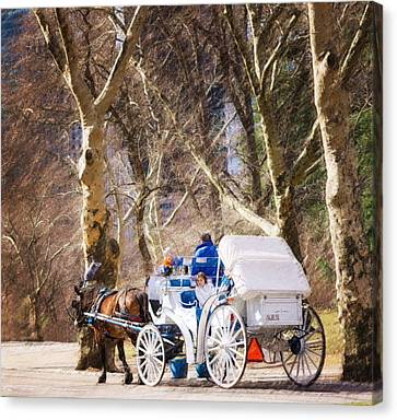 White Carriage In Central Park Canvas Print