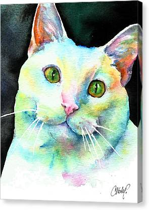 Canvas Print featuring the painting White Cat by Christy Freeman