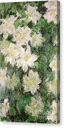 Horticultural Canvas Print - White Clematis by Claude Monet