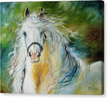 White Cloud The Andalusian Stallion Canvas Print by Marcia Baldwin