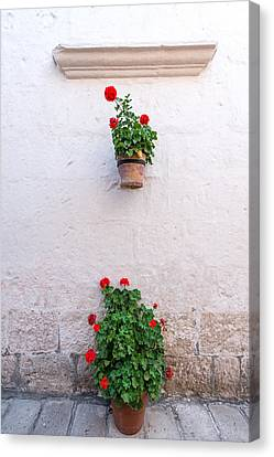 White Colonial Wall And Flowers Canvas Print