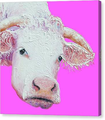 White Cow On Pink Background Canvas Print