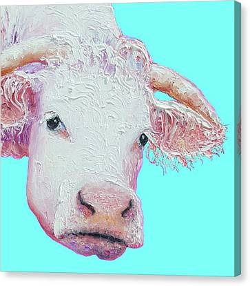 White Cow On Turquoise  Canvas Print