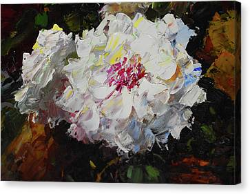 White Dahlias Painted Canvas Print