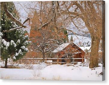 White December Canvas Print by Donna Kennedy