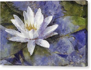 White Diva Canvas Print