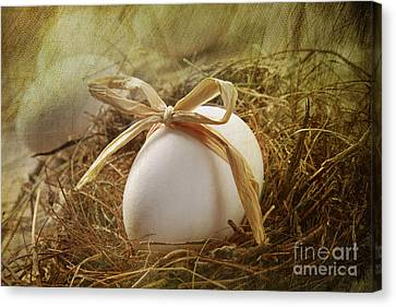 White Egg With Straw Bow In Nest Canvas Print by Sandra Cunningham