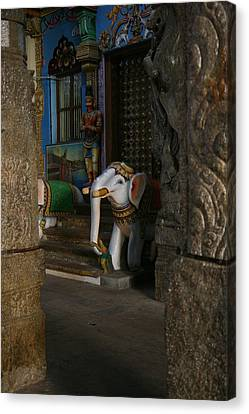 white Elephant Canvas Print by Deepak Pawar