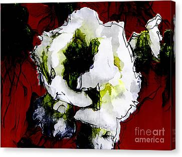 White Flower On Red Background Canvas Print by Craig Walters
