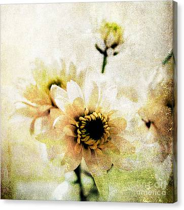 Yellow Flowers Canvas Print - White Flowers by Linda Woods
