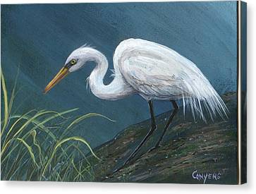 White Heron Canvas Print by Peggy Conyers