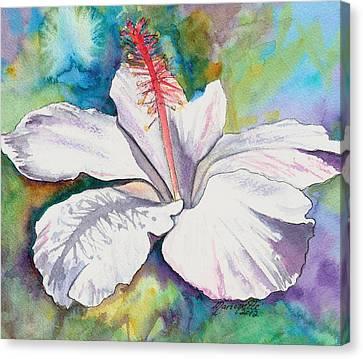 White Hibiscus Waimeae Canvas Print by Marionette Taboniar