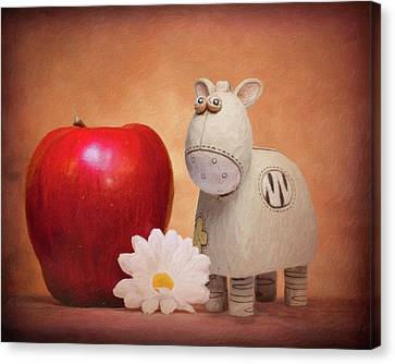 Canvas Print featuring the photograph White Horse With Apple by Tom Mc Nemar
