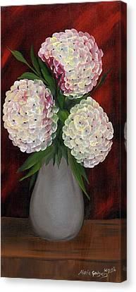 White Hydrangeas Canvas Print by Maria Williams