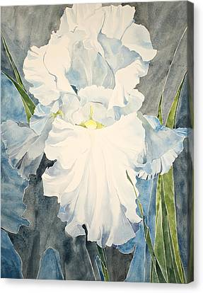 Canvas Print featuring the painting White Iris - For Van Gogh - Posthumously Presented Paintings Of Sachi Spohn   by Cliff Spohn