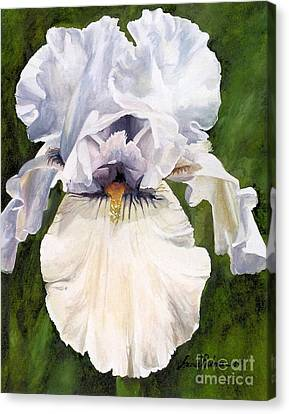 Canvas Print featuring the painting White Iris by Laurie Rohner