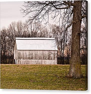 White Kentucky Tobacco Barn Canvas Print by Greg Jackson