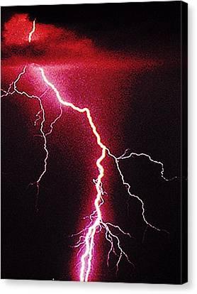 White Lightning Canvas Print by Vicky Brago-Mitchell