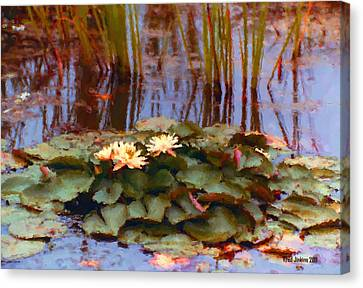 White Lily Canvas Print by Fred Jinkins
