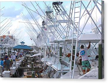 White Marlin Open Docks Canvas Print
