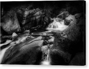 White Mountain Stream Canvas Print