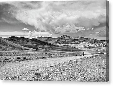 White Mountains Ride Canvas Print by Jamie Pham