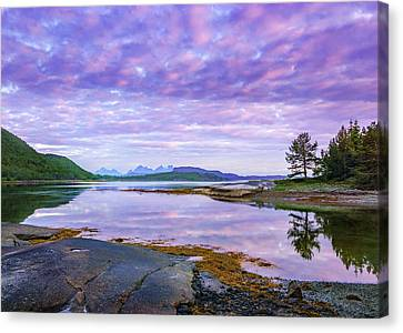 Canvas Print featuring the photograph White Night In Nordkilpollen Cove by Dmytro Korol