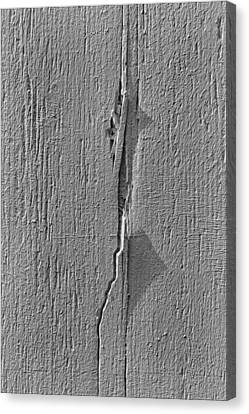White On White Canvas Print by Robert Ullmann