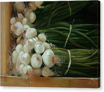 White Onions Canvas Print by Michael Lynn Adams