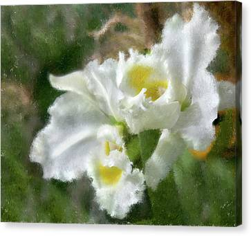 Canvas Print featuring the photograph White Orchid by John Hix
