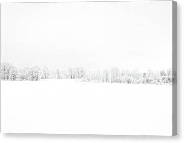 Canvas Print - White Out by Andrea Kollo