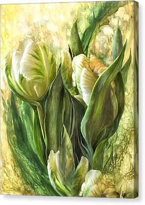 White Parrot Tulips Canvas Print