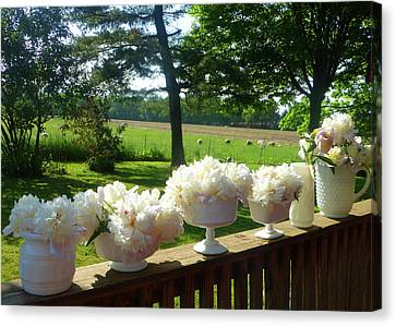 White Peonies On Milk Glass Canvas Print by Tina M Wenger