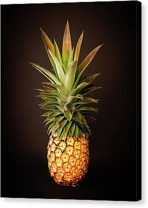 White Pineapple King Canvas Print
