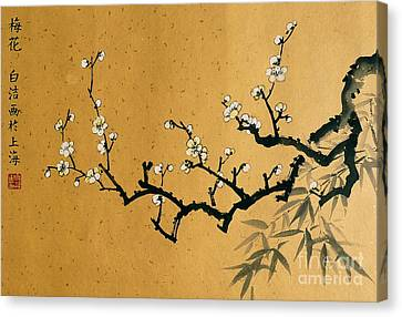 White Plum Blossom With Bamboo Canvas Print by Birgit Moldenhauer