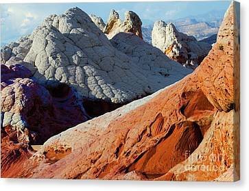 Canvas Print featuring the photograph White Pocket 34 by Bob Christopher