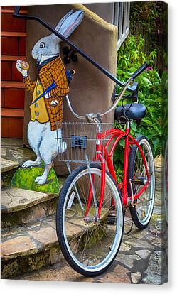 White Rabbit And Bike Canvas Print by Garry Gay