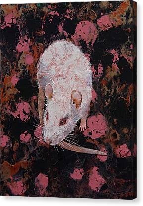 White Rat Canvas Print by Michael Creese