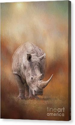 One Horned Rhino Canvas Print - White Rhinoceros In Summer Sun by Sharon McConnell