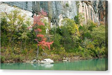 White River Arkansas Canvas Print