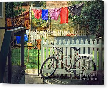 White River Bicycle Canvas Print by Craig J Satterlee