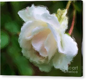 Canvas Print featuring the painting White Rose In Paint by Smilin Eyes  Treasures