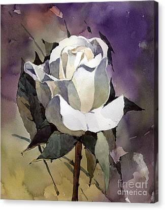 White Rose Canvas Print by Natalia Eremeyeva Duarte