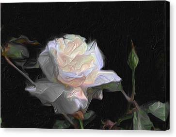 White Rose Painting Canvas Print