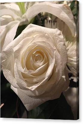 Rememberance Canvas Print - White Rose by Shawn Hughes